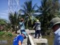 Đội lão nông xây cầu nông thôn từ thiện