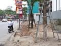 Vỉa hè đầu phố Thái Hà cày lên nham nhở đẩy người đi bộ xuống lòng đường