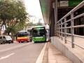 Hà Nội thêm làn ưu tiên cho xe buýt tại nhiều trục đường chính