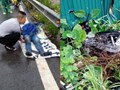 Hà Nội: Đi xe máy băng qua đường sắt, nam thanh niên bị tàu hỏa đâm tử vong