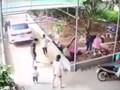 [Clip] Khoảnh khắc cháu bé bị ô tô cán tử vong ngay trong sân nhà