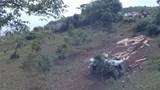 Kon Tum: Đang kiểm đếm gỗ nghi lậu trên xe bị lật ở đèo Măng Rơi