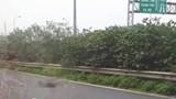 Va chạm với ô tô, người đàn ông nhặt rác thiệt mạng trên đại lộ Thăng Long