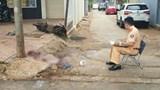Tông vào cột điện bên đường, 2 người thương vong ở Đắk Lắk
