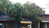 CSGT tuần tra lưu động, phân luồng giao thông trong mưa bão