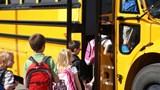 Các nước làm gì để đảm bảo an toàn của trẻ trên xe buýt trường học?