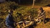 Gia Lai: Xe máy đấu đầu, 3 thanh niên tử vong