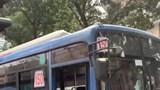 Đình chỉ lái xe buýt có hành vi khiếm nhã