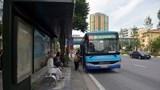Phát triển xe buýt mini: Tăng tính kết nối cho giao thông đô thị