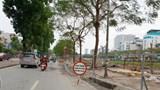Di chuyển cây xanh trên đường Láng: 3,6 tỷ đồng kinh phí được dùng ra sao?