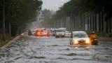 Công khai đường dây nóng giao thông đường bộ trong mùa mưa bão 2019