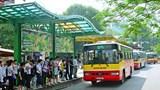 Tìm lời giải cho vận tải hành khách công cộng ở Hà Nội