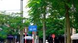 Cấm ô tô lưu thông ban đêm trên đường Đội Cấn từ hôm nay
