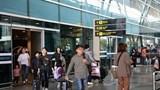 Tạm dừng đưa đón khách từ vùng dịch virus corona đến Đà Nẵng
