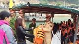 Quảng Ninh: Xử lý hơn 500 trường hợp vi phạm giao thông trong dịp Tết
