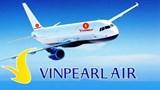 Xem xét về việc dừng phê duyệt chủ trương đầu tư Dự án Vinpearl Air