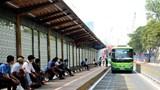 Transerco kiến nghị sớm tổ chức đường dành riêng cho xe buýt