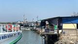 Vụ lấn cảng Sa Kỳ: Sẽ kiểm tra và thu thập lại số liệu