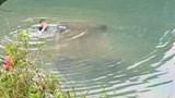 Nữ tài xế tử vong trong chiếc ô tô chìm nghỉm dưới sông