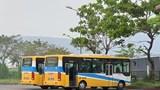 Đà Nẵng tạm dừng xe buýt và các hoạt động liên quan đến tắm biển