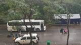 Hà Nội: Sẵn sàng 100 xe buýt chở người dân hoàn thành cách ly về với gia đình