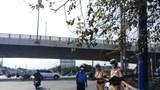 TP Hồ Chí Minh lập 62 chốt, trạm kiểm soát tại các cửa ngõ