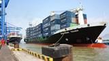 Gỡ khó cho doanh nghiệp vận tải biển