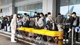 Covid-19: Hỗ trợ gần 300 công dân Việt Nam ở Nhật Bản trong hoàn cảnh khó khăn về nước