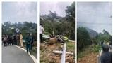 Tam Đảo: Ô tô cùng xe máy lao xuống vực, 4 người tử vong