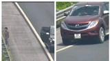 Xử phạt ô tô chạy lùi, dừng xe đi vệ sinh trên cao tốc Hà Nội - Hải Phòng