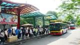 Xe buýt Hà Nội cần thêm thời gian để hồi phục