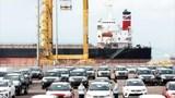 Ô tô nhập vào Việt Nam bắt đầu giảm