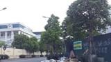 Cầu Giấy: Vỉa hè trên đường Nguyễn Quốc Trị ngập rác