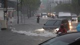 TP Hồ Chí Minh: Mưa như trút nước, đường ngập, cây đổ khắp nơi