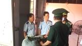 Bắt hơn 100 tấn dược liệu đội lốt củ quả nhập khẩu trong 5 container ở Đà Nẵng