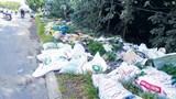 Đường gom Đại lộ Thăng Long ngập trong rác: Hệ lụy từ việc chia nhỏ gói thầu