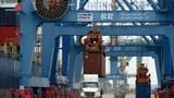Hàng hóa qua cảng biển Việt Nam vẫn tăng bất chấp Covid-19