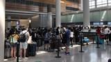 Đưa hơn 340 công dân Việt Nam từ sân bay San Francisco về nước an toàn