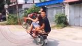 Xử phạt 2 thanh niên bốc đầu xe máy ở Ứng Hòa