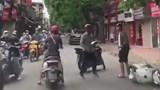 Hai tài xế đánh nhau sau va chạm giao thông