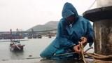 Bộ Giao thông Vận tải chỉ đạo khẩn trước diễn biến khó lường của cơn bão số 7