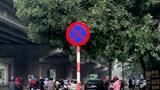 Hà Nội: UBND quận Thanh Xuân đề nghị cắm mới biển báo, đèn tín hiệu trên địa bàn