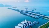 Việt Nam có Cảng tàu khách hàng đầu châu Á 2020