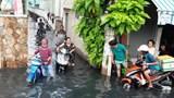 TP Hồ Chí Minh: Dự án Cải thiện môi trường nước bị phản ánh làm hư hỏng đường