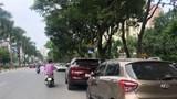 Ô tô dừng đỗ tràn lan tại đường Nguyễn Khuyến, quận Hà Đông