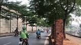 Sau 1 tháng phản ánh, tuyến đường Bưởi vẫn tràn ngập rác thải