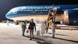 Đã có hơn 240 chuyến bay đưa công dân về nước tránh dịch Covid-19