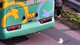 Xe khách che biển số dừng đỗ trên cao tốc Nội Bài - Lào Cai