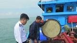 Bắt giữ tàu chở dầu diesel không có chứng từ