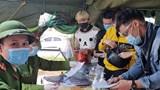 Quảng Ninh: Công nhân ở tỉnh ngoài được bố trí xe đưa đón trở lại làm việc